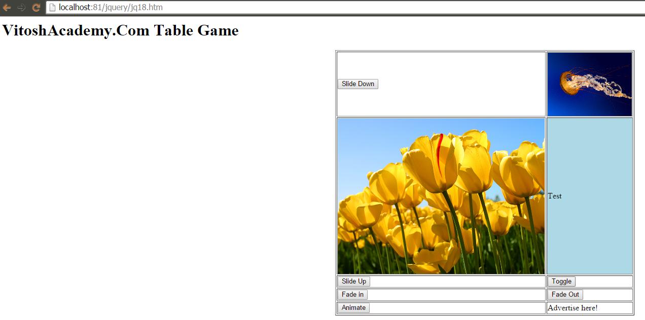 JQuery – fadeIn(), slideToggle(), slideUp(), animate